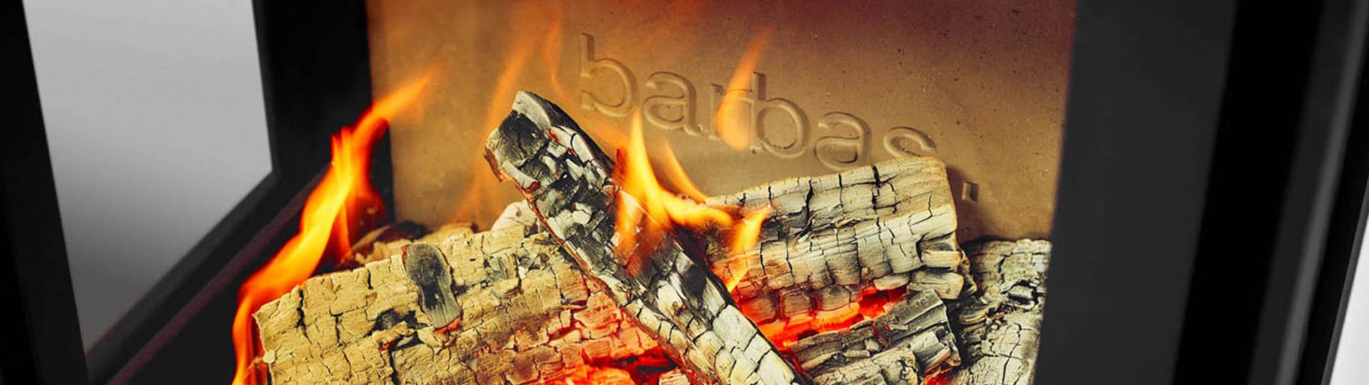 Quel Marque De Poele A Bois Choisir un poêle à bois pour la vraie sensation de feu de camp